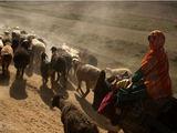 Naseero Fedayee (Afganistanas) nuotr./Ghor province