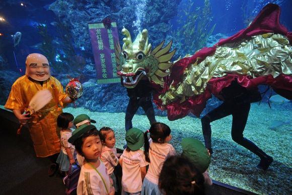 AFP/Scanpix nuotr./Drakonas Bankoko akvariume