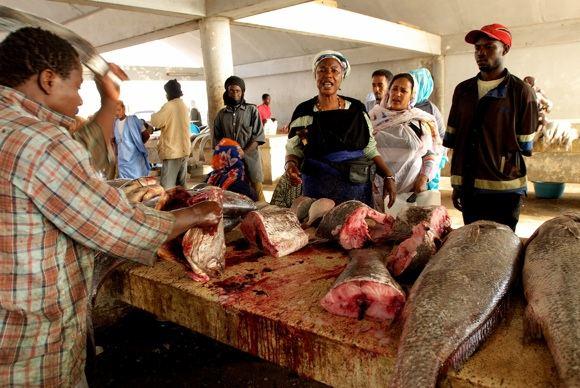 Scanpix nuotr./Žuvies turgus Mauritanijos sostinėje Nafakaute