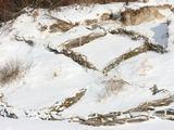Aurelijos Kripaitės/15min.lt nuotr./Kopų tvirtinimas žabtvorėmis - žymiai pigesnis būdas nei paplūdimių maitinimas smėliu.