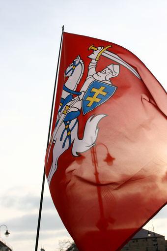 Tomo Urbelionio/BFL nuotr./Istorinė vėliava su Vyčiu