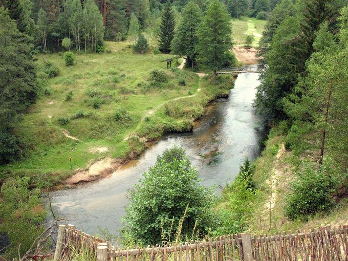 Organizatorių nuotr./Dzūkijos nacionalinis parkas