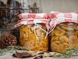 Shutterstock nuotr./Raugintos voveraitės