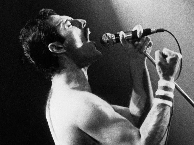 """Scanpix"" nuotr./Freddie Mercury"