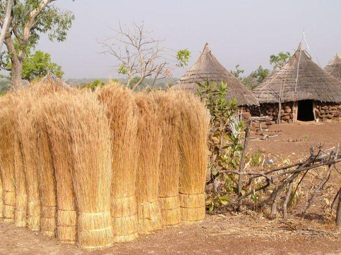 Fotolia nuotr./Basarių žemė Senegale