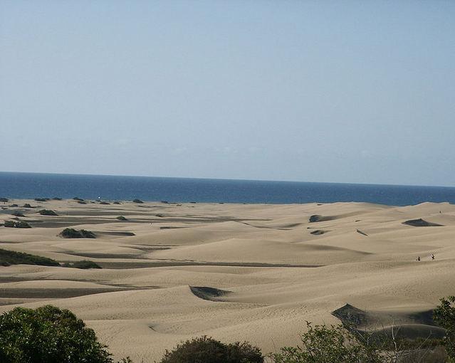 wikimedia.org nuotr./Paplūdimio kopos Gran Kanarijoje