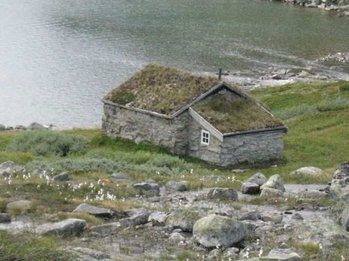 Larso Nordby vasaros namelis ant fiordo kranto. Asmeninio archyvo nuotr,