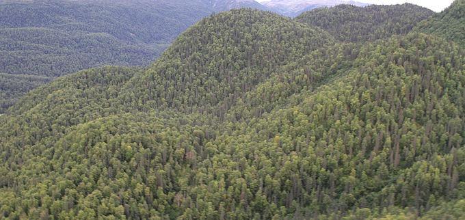 Eveilinos ir Karolio nuotr./O kai kurios vietos priminė Laoso džiungles