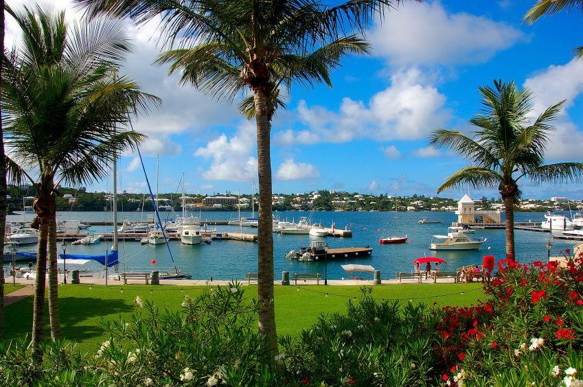 Bermudai