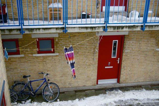 Medeinos Čijauskaitės nuotr./Vaizdelis per daniako bendrabučio langa