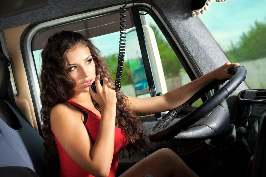 Prie vilkiko vairo – dailioji lytis