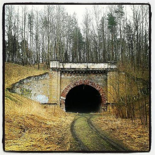 Liudo Basiulio nuotr./Panerių tunelis