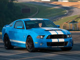 Gamintojo nuotr./Ford Mustang Shelby GT500