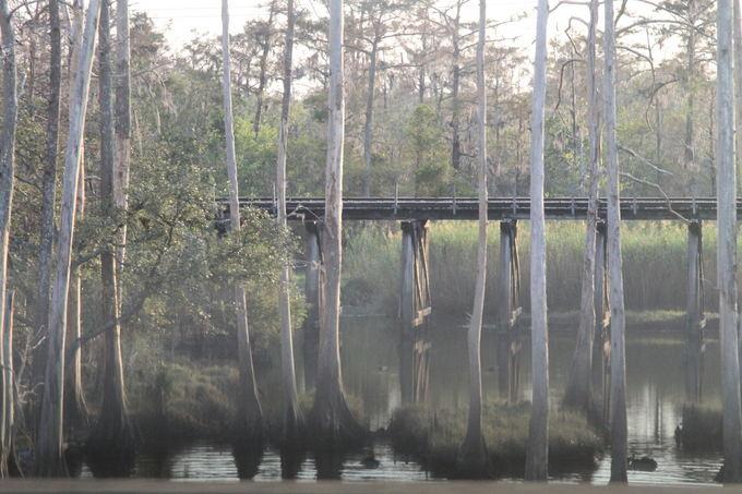 Evelinos ir Karolio nuotr. /Net ir geležinkelį tenka tiesti ant medinių pastolių