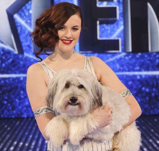 Youtube.com stopkadras/10 vieta  Britain's Got Talent konkurso nugalėtojas aunelis Pudsey