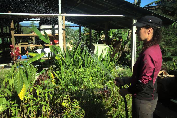 Evelinos ir Karolio nuotr./Mūsų kasdienybės darbai - laistyti augalus, kai lietus nesilanko jau kelias dienas
