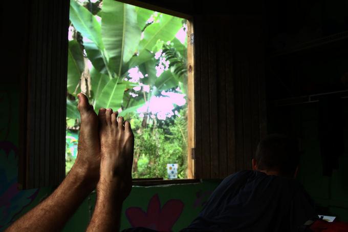 Evelinos ir Karolio nuotr./Pro mūsų langus