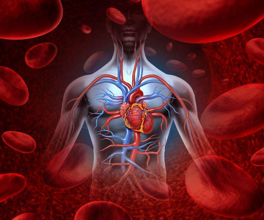 kaip patikrinti savo širdies sveikatą