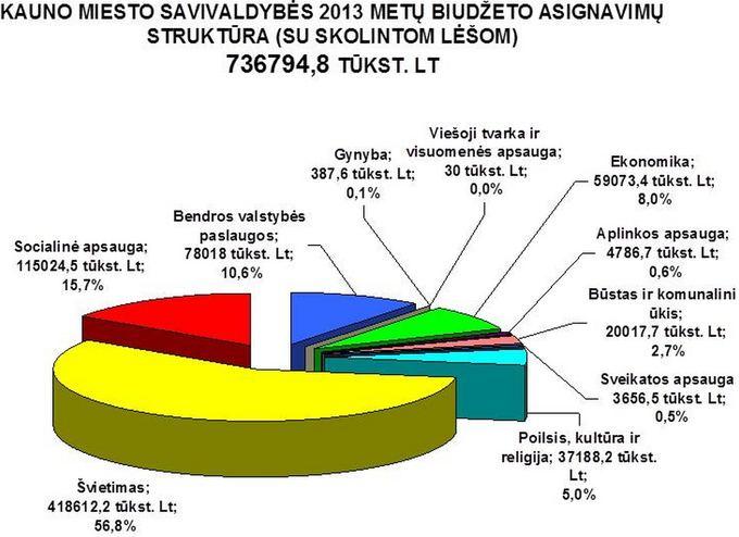 Kaunas.lt nuotr./2013 m. Kauno biudžetas