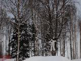Žygimanto K. nuotr./Slidinėjimas Latvijoje, Milžkalnyje (Milžino kalne)