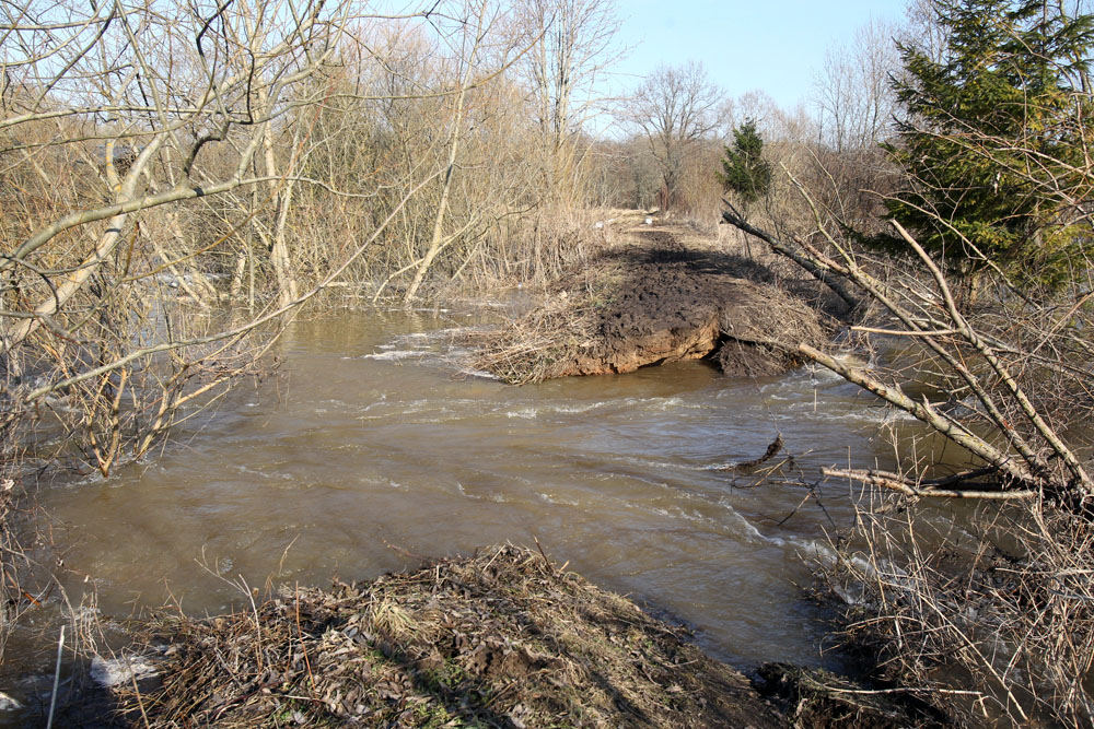 Nevėžio upėje aptiktas moters kūnas, dar viena mirusioji – Biržų rajone