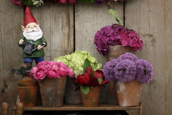 Chelsea Flower Show paroda