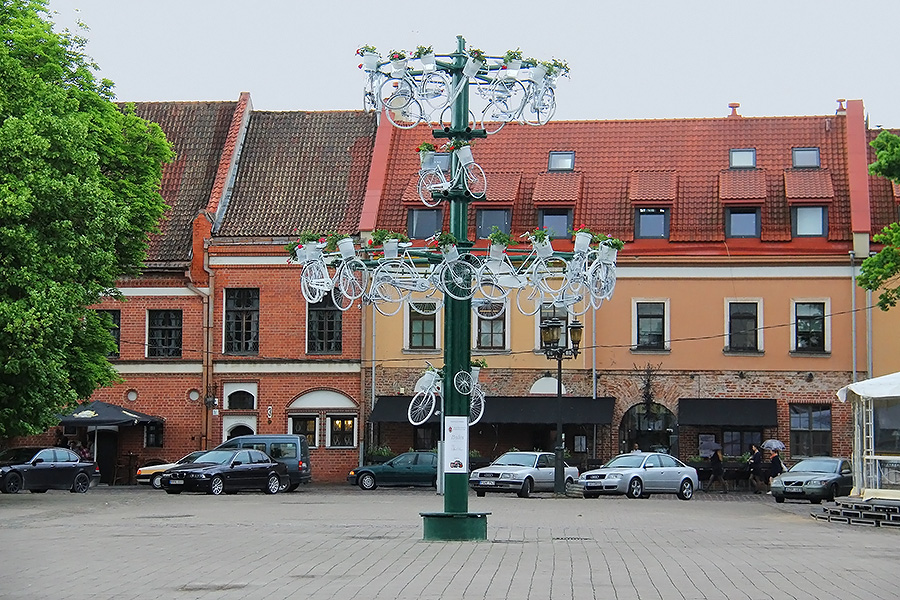 Dviračių medis Kaune