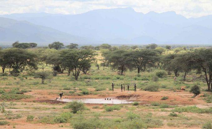 Evelinos ir Karolio nuotr./Lekiant pro nuostabius Kenijos laukus atsiveria neįtikėtini gamtos ir žmonių vaizdai. Kas maudosi, kad plauna drabužius.