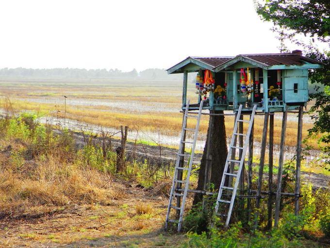 123rf.com nuotr./Tailande dvasių nameliai pakelėje panaaūs į lietuviakus koplytstulpius