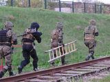 Lenkijos SOP kariai pratybose Lietuvoje 2013 m. pavasarį