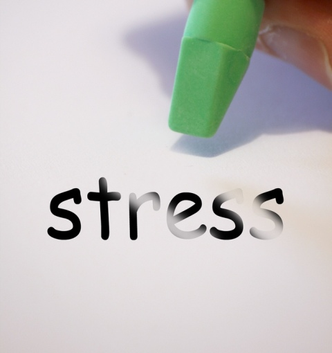 Alan Cleaver, Flickr.com/Kaip išvengti streso?