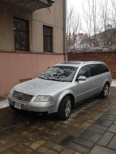 Asmeninio albumo nuotr./Naujasis Editos Daniūtės automobilis