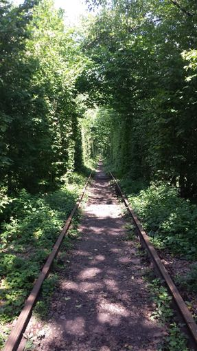 Juozapas.lt nuotr./Meilės tunelis Ukrainoje