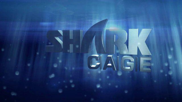 """Shark cage"" projektas"