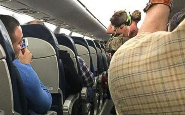 Kiaulė iš lėktuvo buvo išprašyta