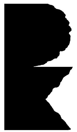 Pirmosios knygos serijos ženklas