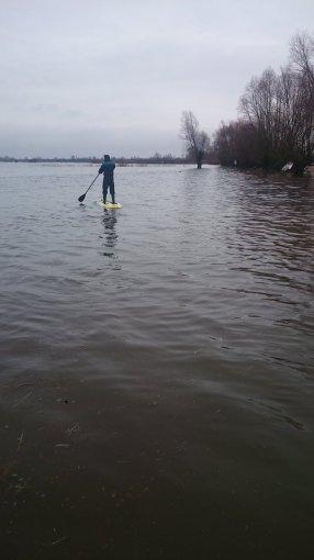 Potvynis pamaryje (Monikos Dobrovolskytės nuotr.)