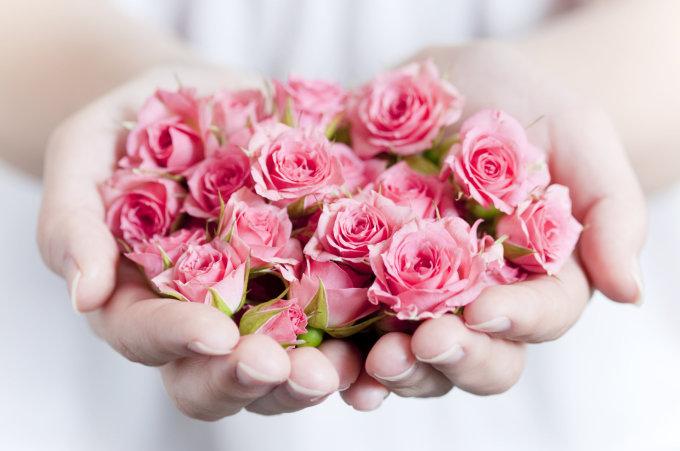Fotolia nuotr./Rožių žiedai.