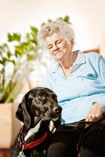 Vida Press nuotr./Sena moteris ir terapinis šuo