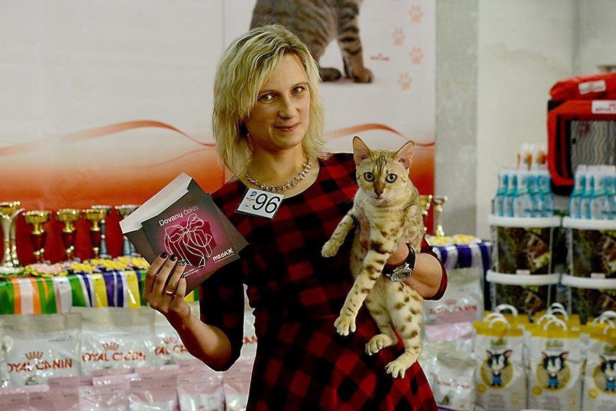 Svetlana Žilinskienė ir jos bengalų katė Missery Jessy