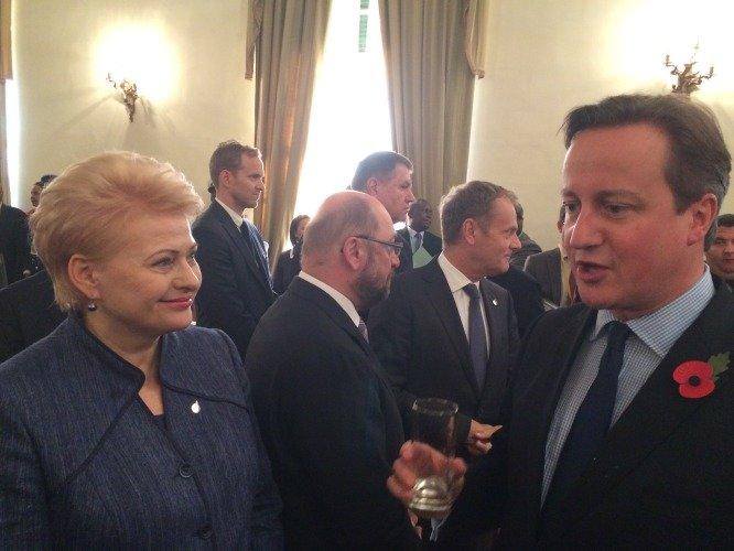 Dalia Grybauskaitė ir Didžiosios Britanijos premjeras Deividas Cameronas