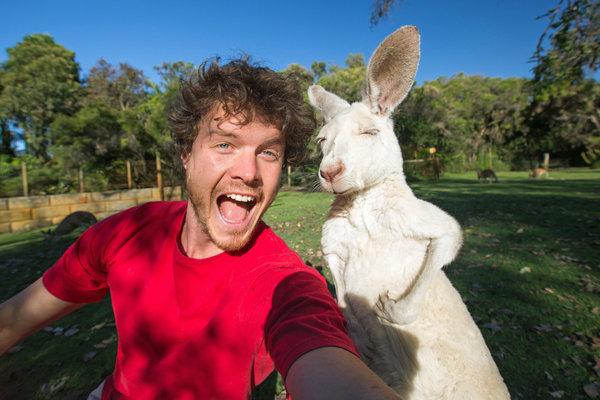 Allanas su kengūra