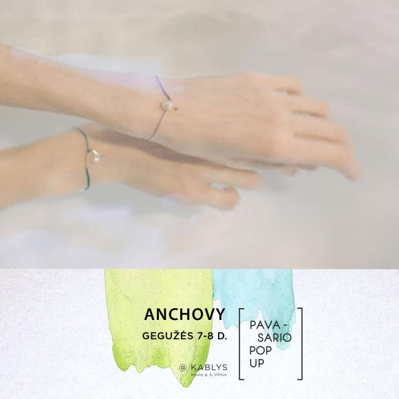 """Organizatorių nuotr./""""Pavasario Pop up"""" dalyvis: """"Anchovy"""""""