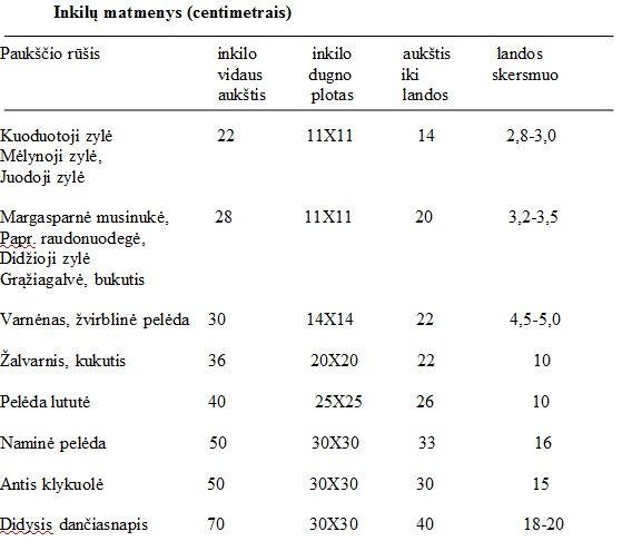 lentelė/Inkilų matmenys (centimetrais)