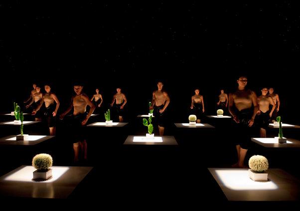 "Rahi Rezvani nuotr./""Nyderlandų šokio teatro 2"" spektaklis ""Kaktusai"""