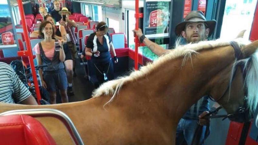 Austrijoje vyras mėgino įlaipinti į keleivinį traukinį arklį