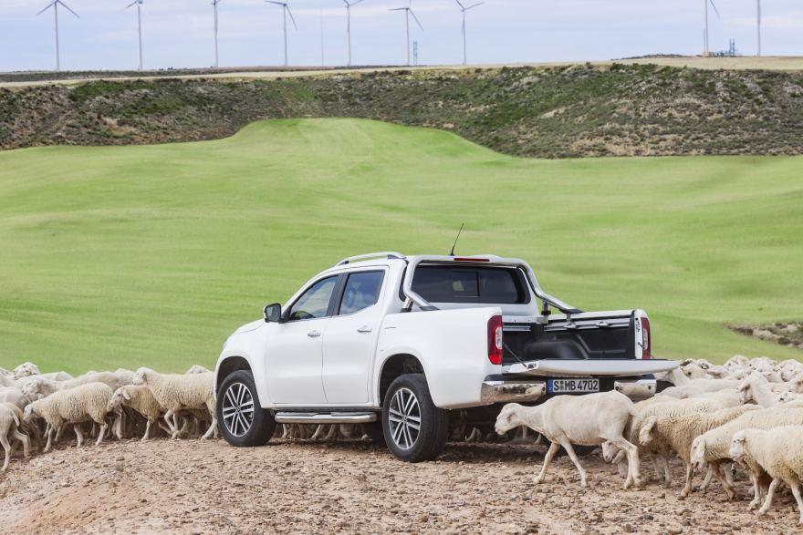 Mercedes Livestock Show 2020.Mercedes Benz Pikapai Galerija Gazas Lt