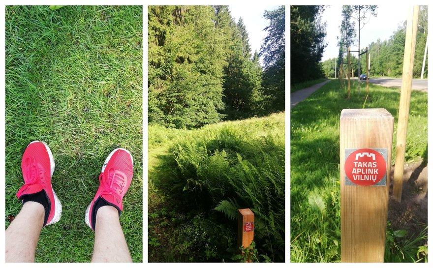 vaikščiojimas su stulpais ir hipertenzija)