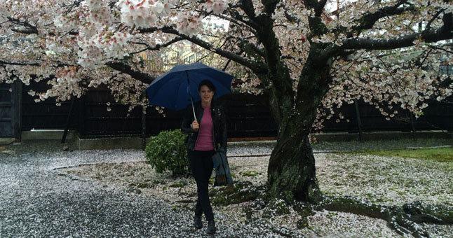 Laura Popkytė-Fukumoto prie Kioto mieste esančios šventyklos sakuros