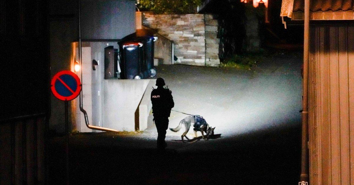 Norvegijoje lanku ir strėlėmis ginkluotas vyras nužudė kelis žmones